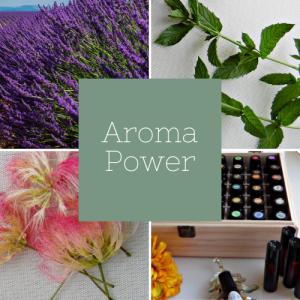 Aroma Square